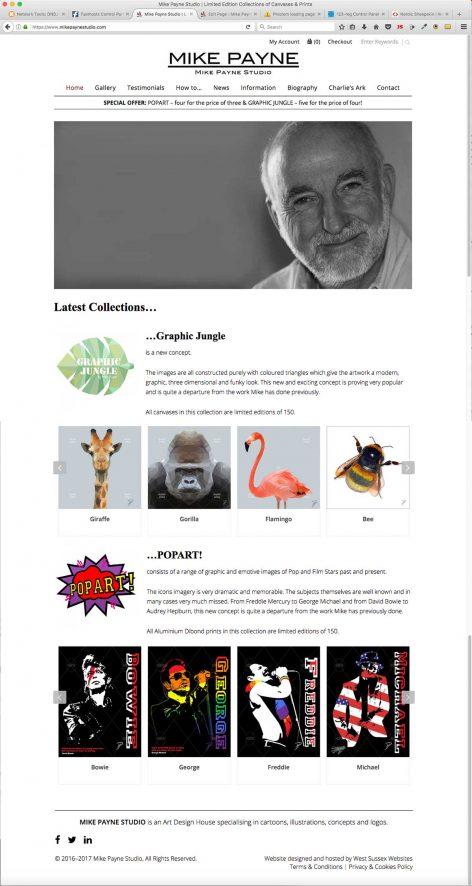 Mike Payne Studio Website-150